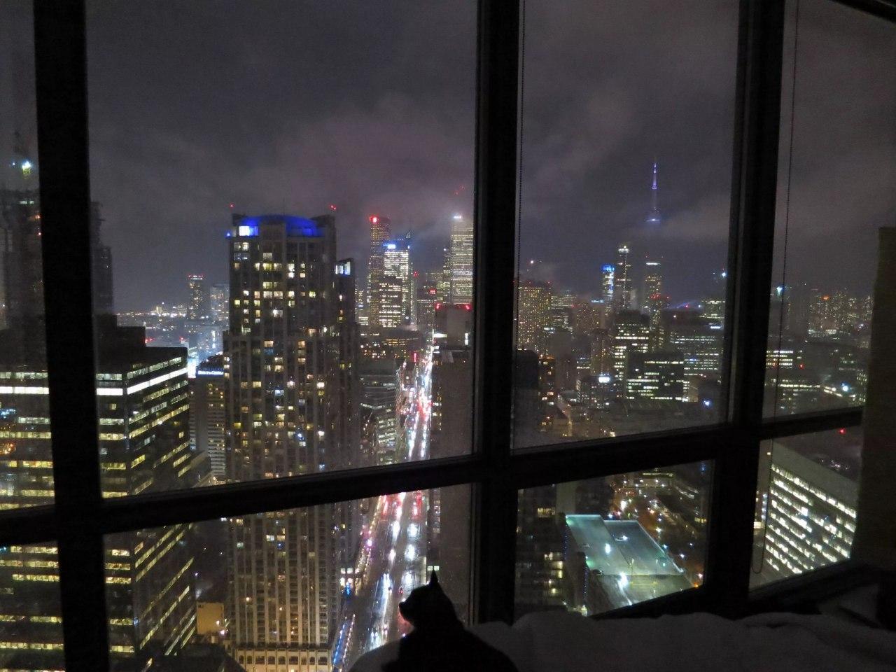 весь город картинки вид с окна на телефон весенние